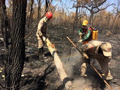Operação Maranhão Sem Queimadas amplia combate a incêndios no estado