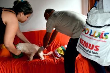 Iniciada vacinação antirrábica pelo Centro de São Luís