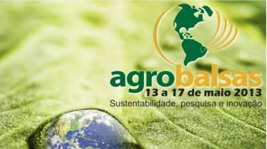 Agrobalsas espera gerar R$ 200 milhões em negócios, a partir desta segunda-feira (13)