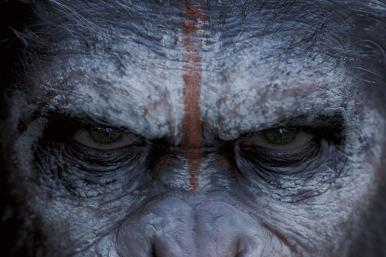Dawn  Planet  Apes on Dawn Of The Planet Of The Apes Poster A P Grande Jpg