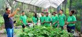 Escola Casa Familiar Rural: pareceria incentiva empreendedorismo agrícola